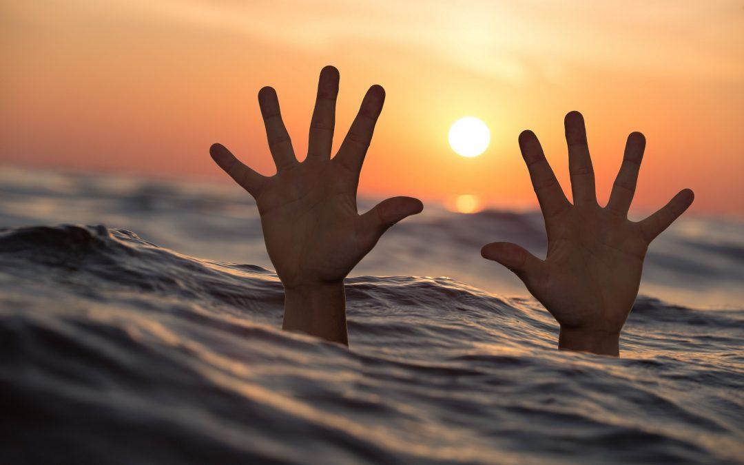 IGAZ TÖRTÉNETEK: Amikor a túlélési ösztön alszik….